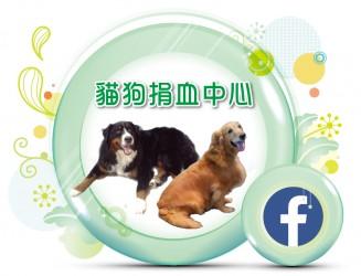 新北市照生會 貓狗捐血中心 臉書