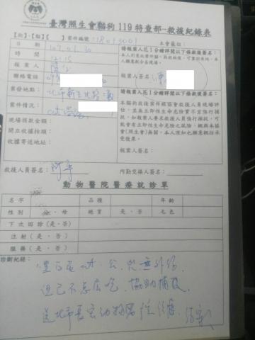 107年1月30日-1 台北市傷貓