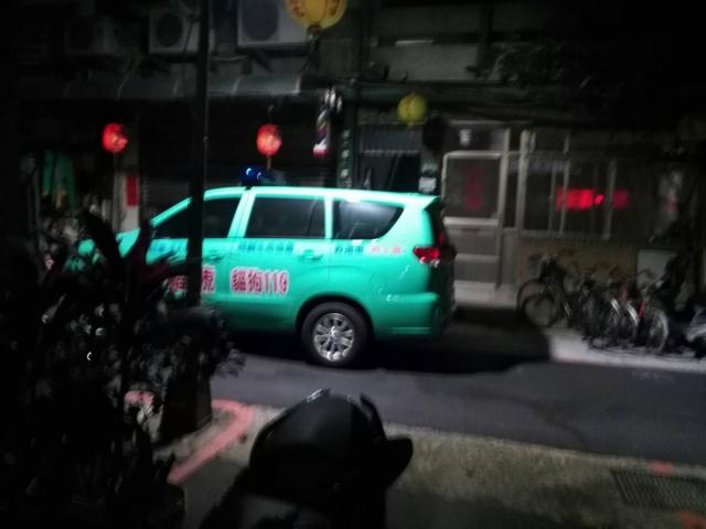 106.02.17.臉部潰爛小花貓 ( 照生會 貓狗119 )